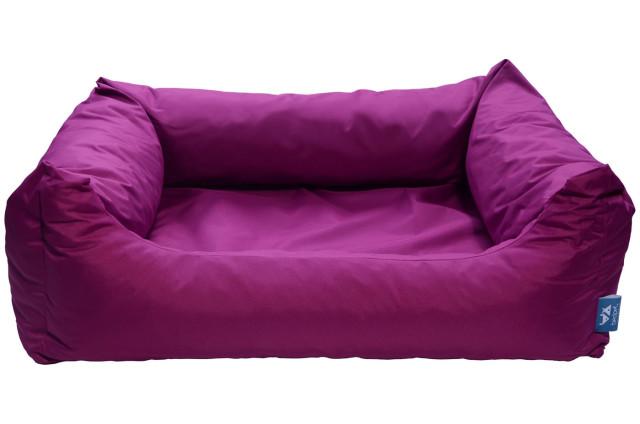kanapa purple